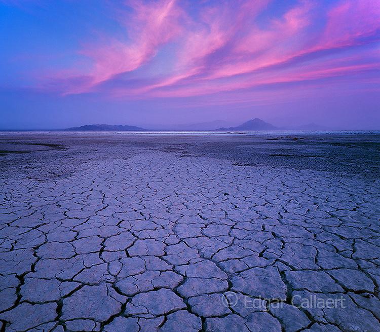 Dusk, Soda Lake, Zzyzx, Mojave National Preserve, California