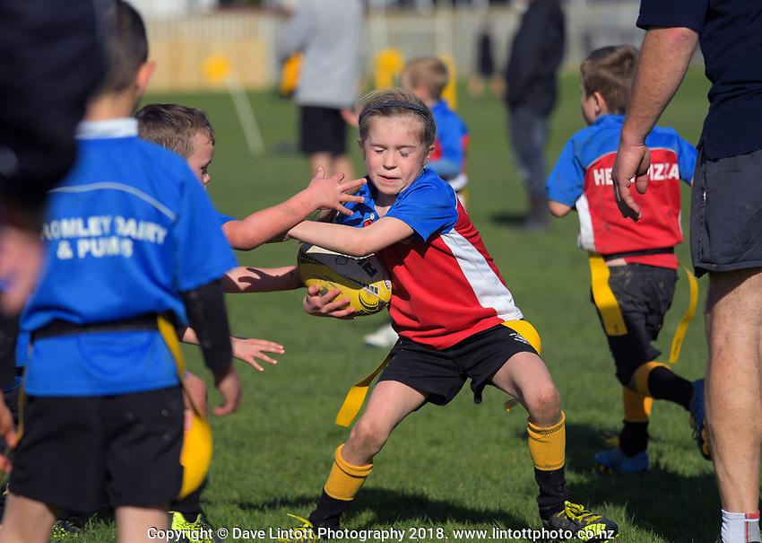 Kids Rugby Feilding Saturday Morning Rugby 1 September 2018 Dave Lintott Photography