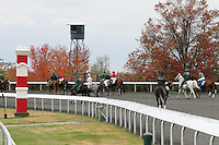Scenic Keeneland Fall.  October 20, 2012.