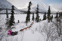Dee Dee Jonrowe runs down the trail just prior to the Rainy Pass checkpoint in the Alaska Range on Monday