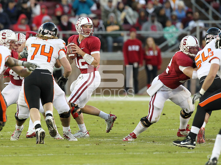 STANFORD, CA-NOVEMBER 27, 2010- Andrew Luck during the Stanford 38-0 victory over Oregon St., Saturday, November 27, 2010.