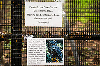 Signs posted on the cage where a Great horned owl  is being treated at the Sulphur Creek Nature Center in Hayward, California.
