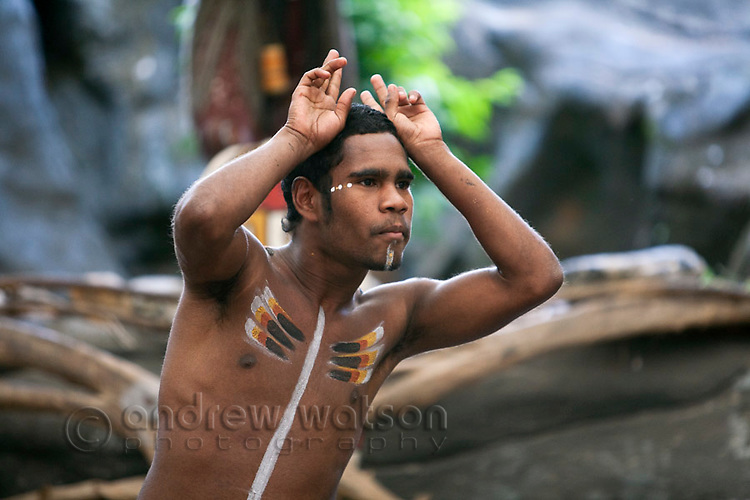 Indigenous dancer at Tjapukai Aboriginal Cultural Park.  Smithfield, Cairns, Queensland, Australia