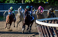 ELMONT, NY - JULY 09: The field turns for home in the Suburban Stakes, eventually won by Diversify (leading in green cap) during Stars and Stripes Racing Festival  at Belmont Park on July 7, 2018 in Elmont, New York. (Photo by Dan Heary/Eclipse Sportswire/Getty Images)