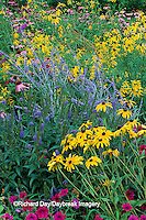 63821-08919  Wave Petunias, Black-eyed Susans, Blue Veronica, Russian Sage, Gray-headed Coneflowers, & Purple Coneflowers  IL