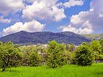 Widok na Beskidy, Mszana Dolna, Polska<br /> View of the Beskidy Mountains, Mszana Dolna, Poland