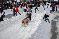 Wade Marrs runs down 4th avenue during the Ceremonial Start of the 2016 Iditarod in Anchorage, Alaska.  March 05, 2016