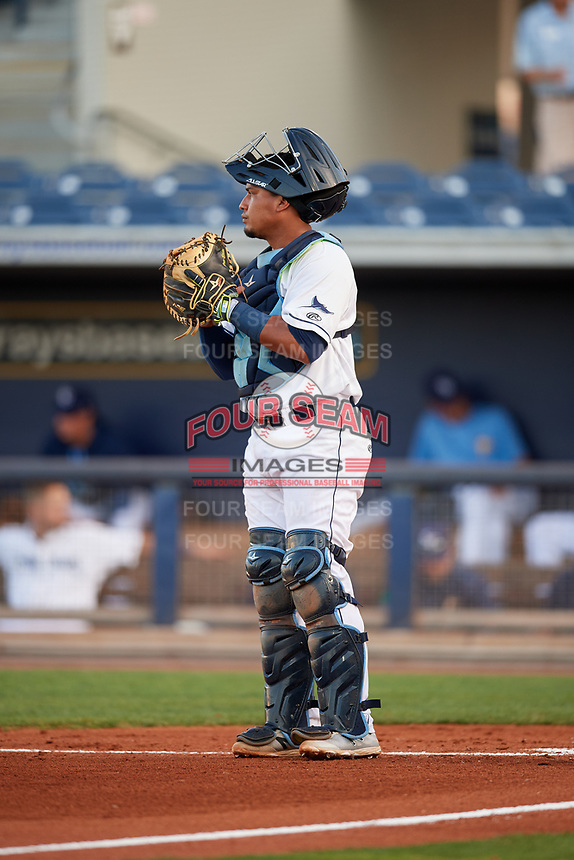 Charlotte Stone Crabs catcher David Rodriguez (13) during a game against the Palm Beach Cardinals on April 20, 2018 at Charlotte Sports Park in Port Charlotte, Florida.  Charlotte defeated Palm Beach 4-3.  (Mike Janes/Four Seam Images)