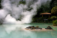 Shiraike Jigoku as its name implies, white pond hell, features a pond of hot, milky white water. The rising steam makes it especially dramatic.
