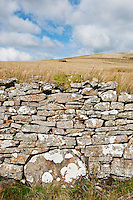 Stone walls of derelict buildings, Brecon Beacons national park, Wales