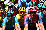 The peloton including Yellow Jersey Giulio Ciccone (ITA) Trek-Segafredo in action during Stage 8 of the 2019 Tour de France running 200km from Macon to Saint-Etienne, France. 13th July 2019.<br /> Picture: ASO/Alex Broadway | Cyclefile<br /> All photos usage must carry mandatory copyright credit (© Cyclefile | ASO/Alex Broadway)
