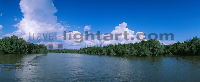 www.travel-lightart.com, ©Paul J. Trummer, Asia, Countries, Country, Geography, Thailand, Asien, Geografie, Länder, Siam, Staat, Staaten, Krabi-river, Krabi, Mangroves, Baum, Bäume, Botanik, Flora, Laubbaum, Laubbäume, Lebewesen, Mangrove, Mangroven, Mangrovenbaum, Mangrovenbäume, Natur, Pflanze, Pflanzen, Vegetation, botanic, botany, deciduous tree, deciduous trees, living being, nature, plant, plants, Fluss, Flüsschen, Flüsse, Flusslauf, Flussläufe, Fluß, Flußlauf, Flußwasser, Gewässer, Landschaft, Landschaftsform, Landschaftsformen, bodies of water, body of water, landscape, landscape form, landscape forms, landscapes, river water, Ac, Altocumulus, Altokumulus, Himmel, Naturelemente, Wolke, Wolken, altocumulus cloud, altocumulus clouds, cumulous cloud, cumulous clouds, elements, skies, sky