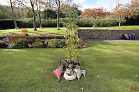 Pictured: A tree planted by Prince Charles at the Memorial Garden Friday 21 October 2016<br />
