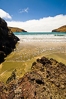 Le Bons Bay of Banks Peninsula near Christchurch - East Coast, Canterbury, New Zealand