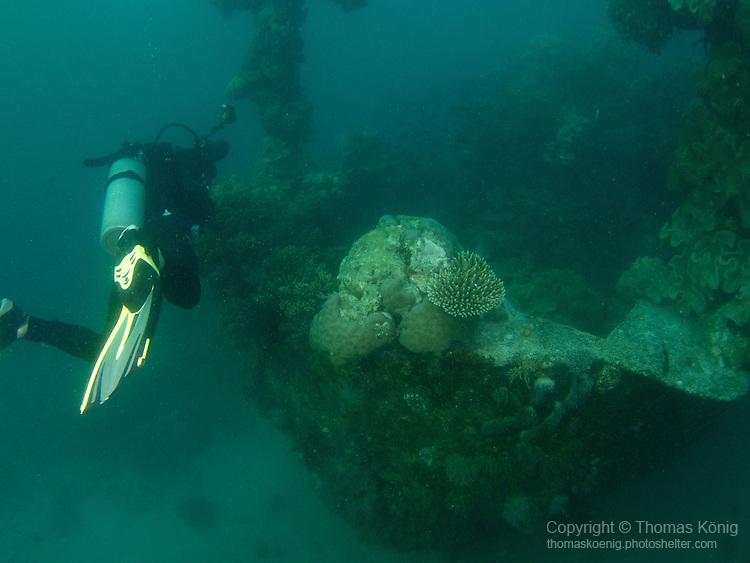 Apo Reef, Sulu Sea -- Diver at the bow of Apo Wreck.