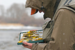 A fly fisherman chooses a streamer during a snowstorm on the South Fork of the Snake River, Idaho.