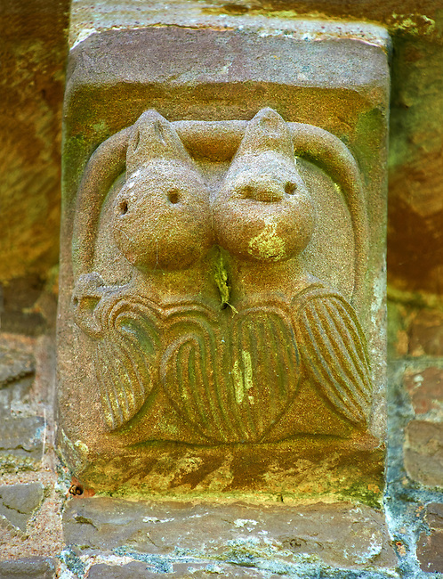 Norman Romanesque exterior corbel no 36 - sculpture of two fledgling birds both biting a serpent. Possibly an allegory of the original sin man is born with due to Adam taking the apple from a serpent in the garden of Eden.  The Norman Romanesque Church of St Mary and St David, Kilpeck Herefordshire, England. Built around 1140