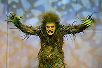 FORT LAUDERDALE FL - DECEMBER 16 : Stefan Karl as The Grinch poses for a portrait during media day at The Broward Center on December 16, 2015 in Fort Lauderdale, Florida. Credit: mpi04/MediaPunch