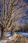 Late winter in Bridgewater, VT, USA