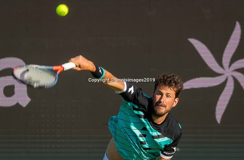 Rosmalen, Netherlands, 11 June, 2019, Tennis, Libema Open, Robin Haase (NED)<br /> Photo: Henk Koster/tennisimages.com