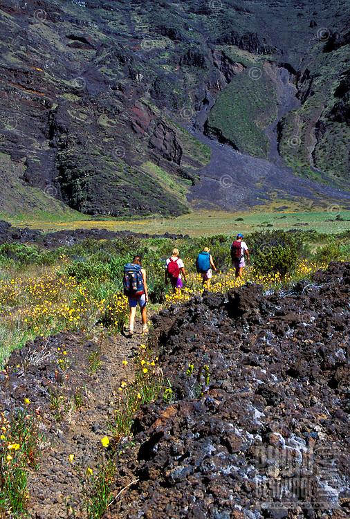 Group of five people hiking through Haleakala National park, Maui