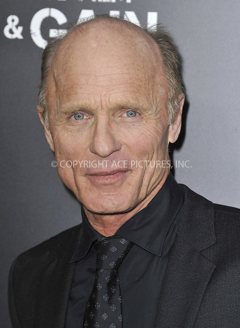 WWW.ACEPIXS.COM....April 22 2013, LA....Ed Harris arriving at the 'Pain & Gain' premiere held at TCL Chinese Theatre on April 22, 2013 in Hollywood, California. ....By Line: Peter West/ACE Pictures......ACE Pictures, Inc...tel: 646 769 0430..Email: info@acepixs.com..www.acepixs.com