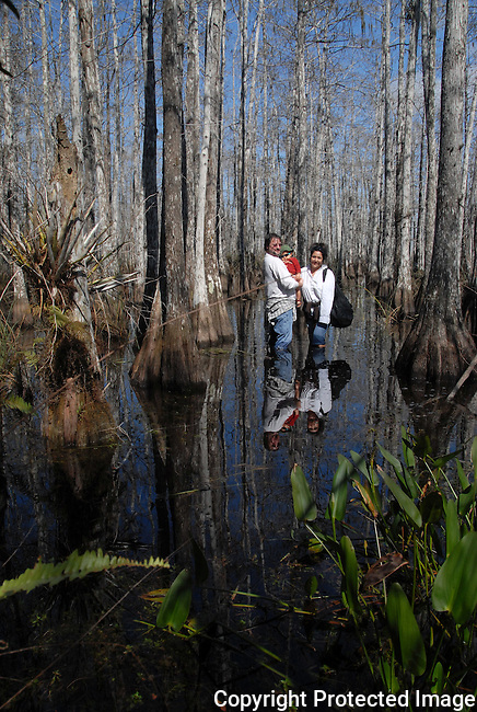 a family, man, woman and toddler, wading in the waters of a cypress mound in Everglades NAtional Park
