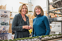 Managing Partners of Higher Standard Packaging Barbara Diner (left) and Deb Baker at the Terrapin Care Station production facility in Aurora, Colorado, Thursday, January 12, 2017. The two women started a business making containers and packaging for cannabis dispensaries and cannabis edibles/concentrates companies, including white plastic canisters made out of recycled milk jugs.<br /> <br /> Photo by Matt Nager