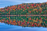 Autumn  colors reflected in  Lac Mod&egrave;ne. Great Lakes - St.  Lawrence Forest Region.<br />La Mauricie National Park<br />Quebec<br />Canada