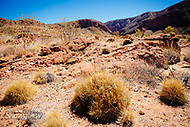 Image Ref: CA535<br />