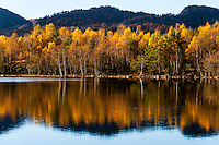 Imsvatnet, Sandnes, Norway. Colourful autumn colours reflected in the water.