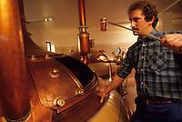 Europe/Belgique/Wallonie/Province du Luxembourg/Orval : Brasserie de l'Abbaye d'Orval - Prise d'échantillon -Bière Trappiste