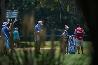 Nelly Korda (USA) waits to hit her approach shot on 8 during round 1 of the 2019 US Women's Open, Charleston Country Club, Charleston, South Carolina,  USA. 5/30/2019.<br /> Picture: Golffile | Ken Murray<br /> <br /> All photo usage must carry mandatory copyright credit (© Golffile | Ken Murray)