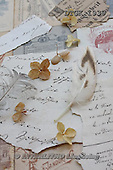Gisela, FLOWERS, BLUMEN, FLORES, photos+++++,DTGK1939,#f#
