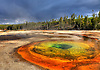 THE HOT SPRING CHROMATIC POOL, STANDS OUT IN THE UPPER GEYSER BASIN, OLD FAITHFUL,YELLOWSTONE NATIONAL PARK