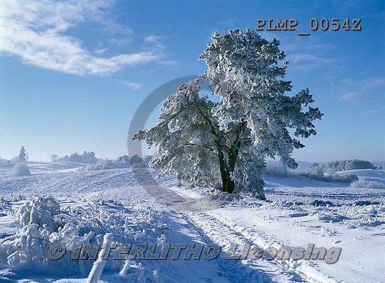 Marek, CHRISTMAS LANDSCAPES, WEIHNACHTEN WINTERLANDSCHAFTEN, NAVIDAD PAISAJES DE INVIERNO, photos+++++,PLMP0054Z,#xl#