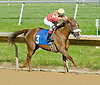 Wycked winning at Delaware Park on 6/6/12
