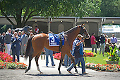 4th Tremont Stakes - Silver Mission