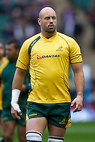 Nathan Sharpe of Australia warms up before the Cook Cup between England and Australia, part of the QBE International series, at Twickenham on Saturday 17th November 2012 (Photo by Rob Munro)