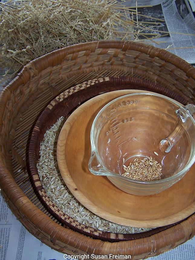 Winter wheat from Joan Gussow's garden