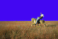 Humorous image of a young cowboy astride an electrical toy horse under a wide blue sky.