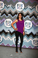 LOS ANGELES - JAN 8:  Annie Parisse attends the FOX TV 2013 TCA Winter Press Tour at Langham Huntington Hotel on January 8, 2013 in Pasadena, CA