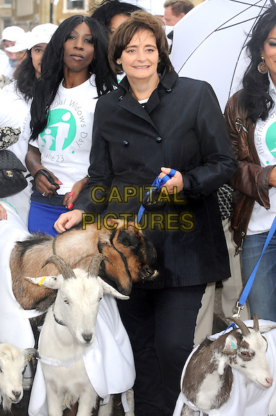 Cherie Blair.International Widows' Day Celebrity Goat Walk at London Bridge, London, England, UK, June 23rd 2012..half length leading goat goats animal black trench coat Booth .CAP/BK/PP.©Bob Kent/PP/Capital Pictures.