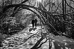 A couple walking along snow covered trail with weeping trees and shadows.