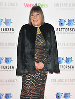 Hilary Alexander at the Battersea Dogs &amp; Cats Home Collars &amp; Coats Gala Ball 2018, Battersea Evolution, Battersea Park, London, England, UK, on Thursday 01 November 2018.<br /> CAP/CAN<br /> &copy;CAN/Capital Pictures