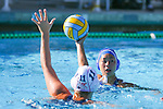 2013 girls water polo: Los Altos High School