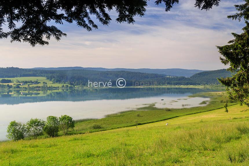 France, Doubs (25), Labergement-Sainte-Marie, lac de Remoray, réserve naturelle, au printemps // France, Doubs, Labergement Sainte Marie, Remoray lake