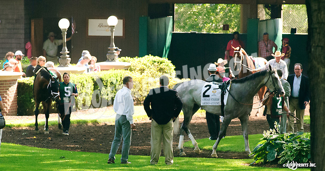 Savings Account before The Obeah Stakes at Delaware Park on 6/11/16