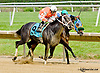 Patriotic Win winning at Delaware Park racetrack on 6/4/14