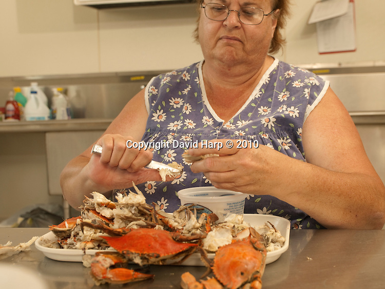 Dora Corbin (blue smock dress) and her sister in law, Tina Corbin (red apron) pick crab meat at the Smith Island Crab Coop on Smith Island, MD.